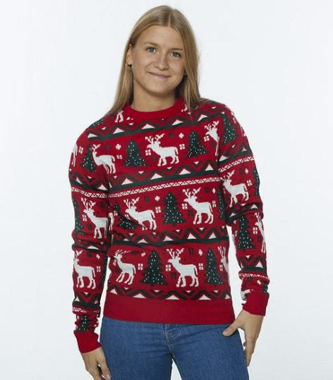 julesweater fin